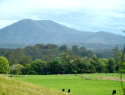 Beautiful views at Bellingen Farmstay